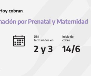 Calendario Pre Natal y Maternidad